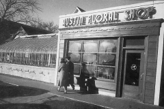 Austin Floral Shop (yr. unknown)