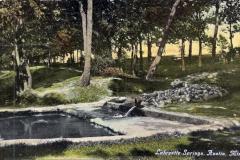 Lafayette Springs Austin, Mn